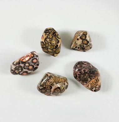 Яшма леопардовая