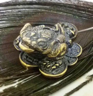 Жаба на монетах