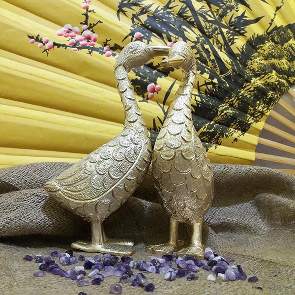 Утки пара/золото